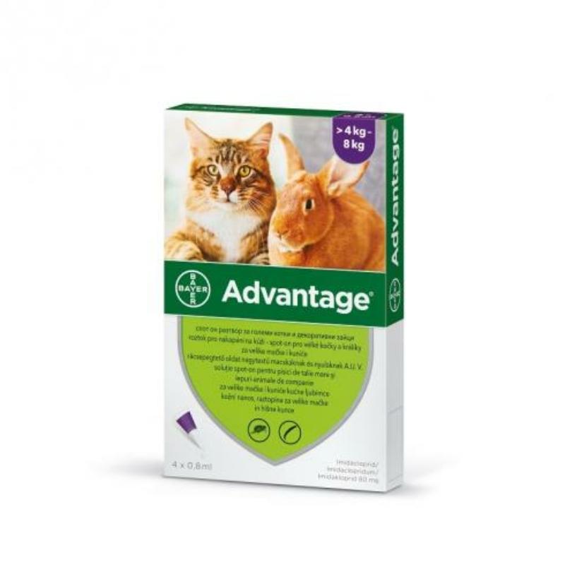 Advantage Spot On 1 x 0,8 ml